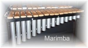 Web marimba